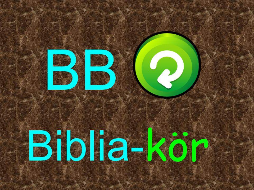 BB Biblia- kör