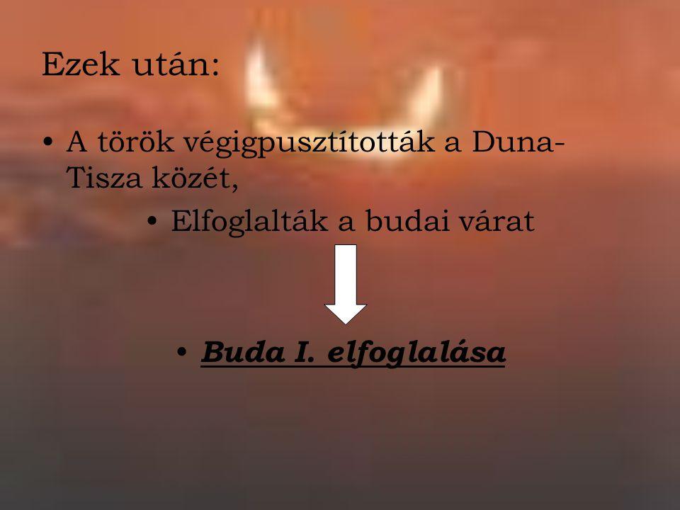 Ezek után: A török végigpusztították a Duna- Tisza közét, Elfoglalták a budai várat Buda I. elfoglalása