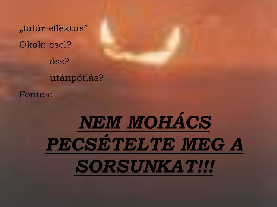 """""""tatár-effektus"""" Okok: csel? ősz? utánpótlás? Fontos: NEM MOHÁCS PECSÉTELTE MEG A SORSUNKAT!!!"""