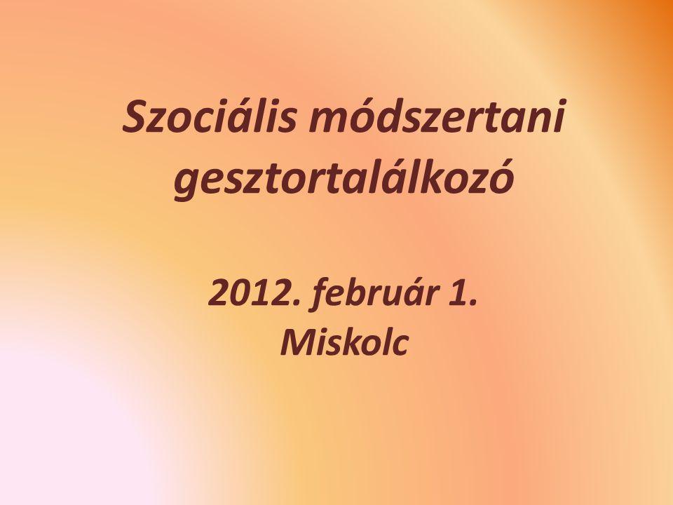 Szociális módszertani gesztortalálkozó 2012. február 1. Miskolc