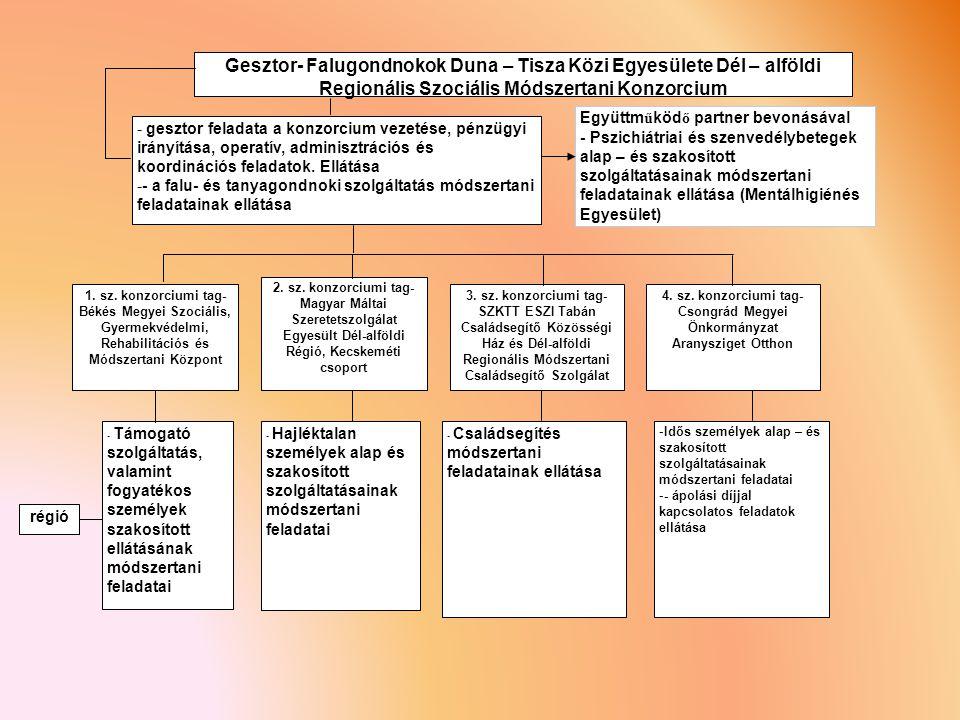 - gesztor feladata a konzorcium vezetése, pénzügyi irányítása, operatív, adminisztrációs és koordinációs feladatok.