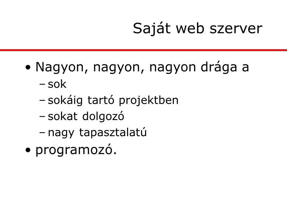 Saját web szerver Nagyon, nagyon, nagyon drága a –sok –sokáig tartó projektben –sokat dolgozó –nagy tapasztalatú programozó.