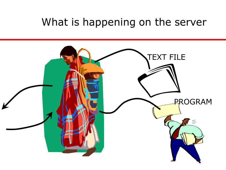 What is happening on the server TEXT FILE PROGRAM