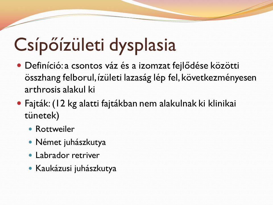 Csípőízületi dysplasia Definíció: a csontos váz és a izomzat fejlődése közötti összhang felborul, ízületi lazaság lép fel, következményesen arthrosis