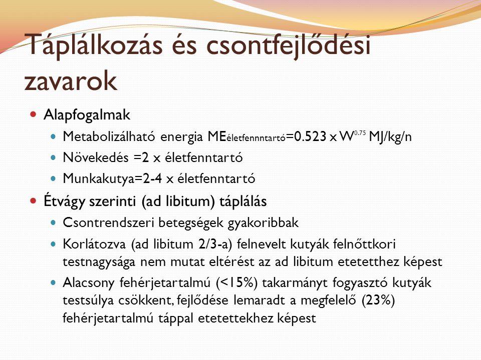 Táplálkozás és csontfejlődési zavarok Alapfogalmak Metabolizálható energia ME életfennntartó =0.523 x W 0.75 MJ/kg/n Növekedés =2 x életfenntartó Munk