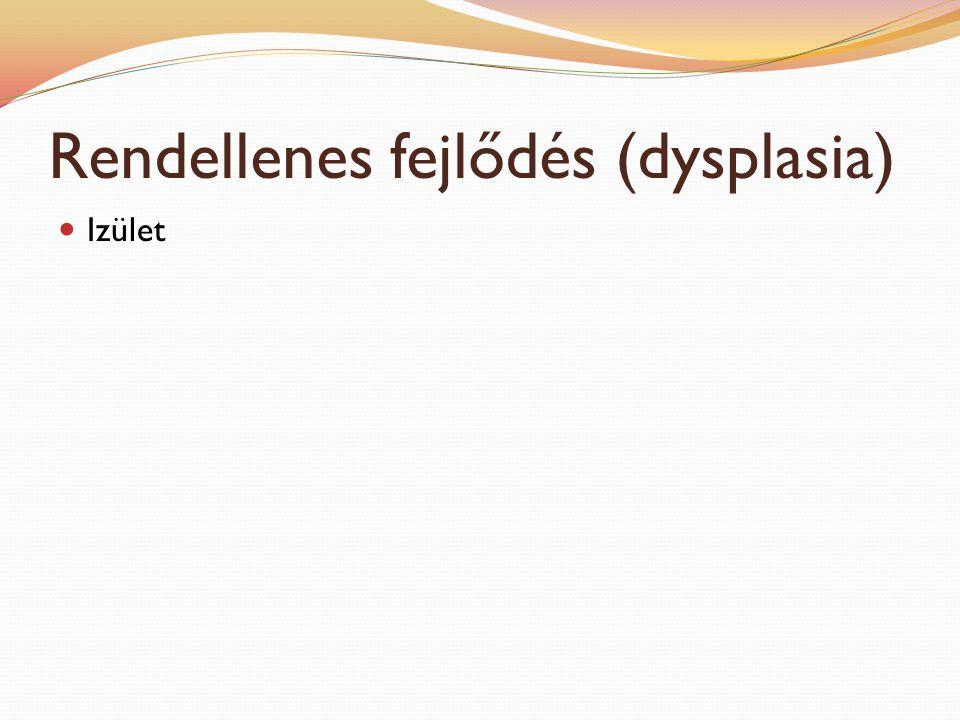 Csípőízületi dysplasia Definíció: a csontos váz és a izomzat fejlődése közötti összhang felborul, ízületi lazaság lép fel, következményesen arthrosis alakul ki Fajták: (12 kg alatti fajtákban nem alakulnak ki klinikai tünetek) Rottweiler Német juhászkutya Labrador retriver Kaukázusi juhászkutya