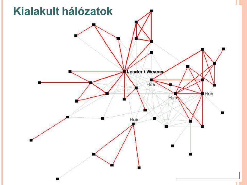 H ÁLÓZATÉPÍTÉS GÁTJAI  A hálózat eszköznek tekintése  A résztvevő szervezetek kihasználása  Idegenkedés az együttműködéstől - bizalmatlanság  Nehéz esetek és bajkeverők  Tisztázatlan alapelvek  Zártság és kizárás  A hálózat fejlődésének erőltetése  Egyformaság és uniformizálás
