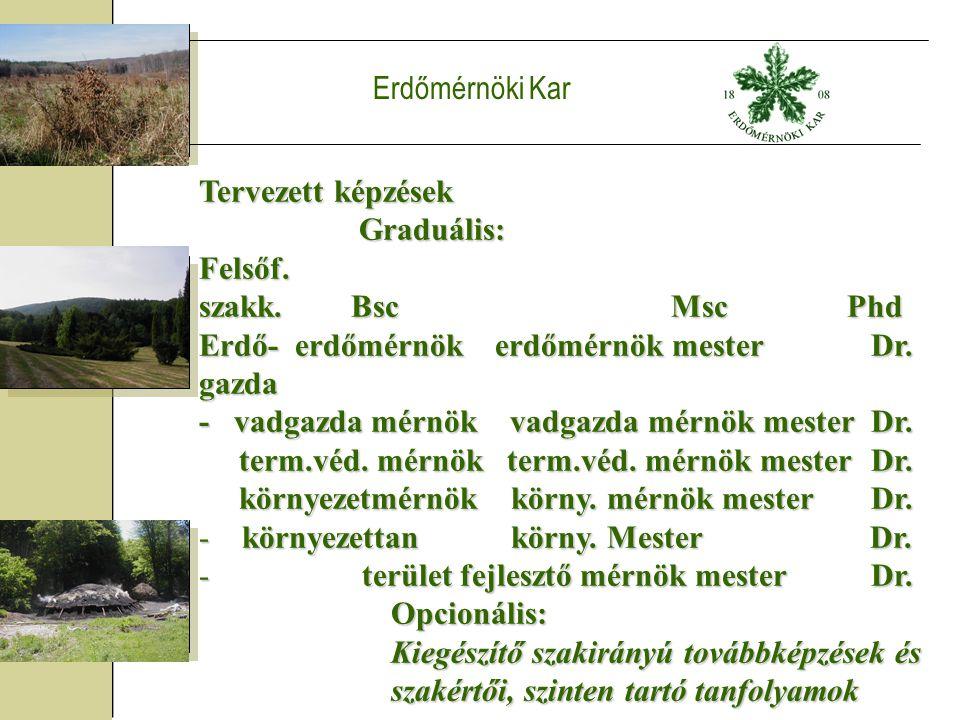 Erdőmérnöki Kar Tervezett képzések Graduális: Graduális:Felsőf.