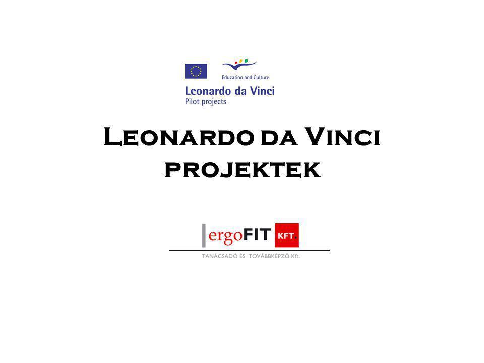 Leonardo da Vinci program célkit ű zései a szakmai készségek és a szakmai tudás fejlesztése a szakmai alapképzésben résztvevők - különösen a fiatalok - körében, főként gyakorlati képzés segítségével; a szakmai továbbképzés minőségének fejlesztése, és az élethosszig tartó képzés jegyében mind szélesebb társadalmi rétegek bevonása ezen képzési formákba; a szakmai képzéssel kapcsolatos újítások (innováció) támogatása, különösen a versenyképesség fejlesztése és a vállalkozói kedv bátorítása.