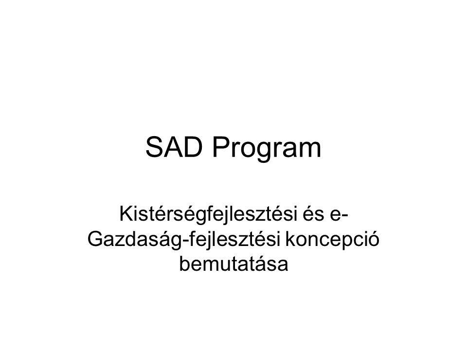 SAD Program Kistérségfejlesztési és e- Gazdaság-fejlesztési koncepció bemutatása