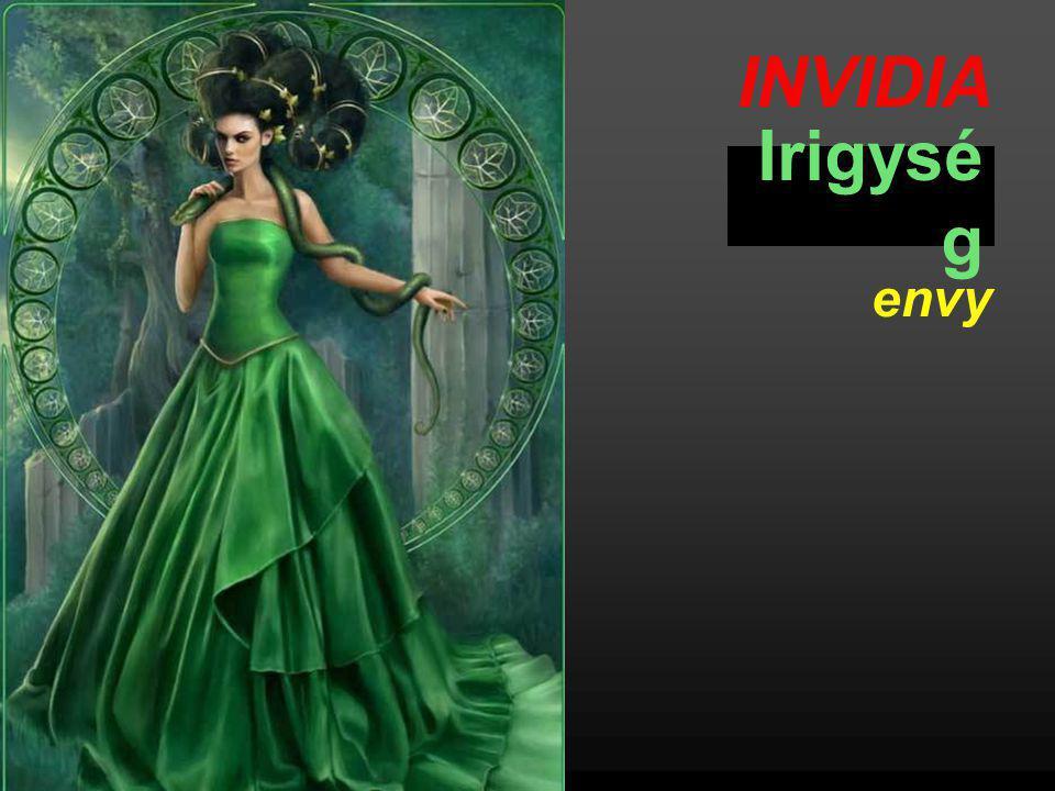 INVIDIA Irigysé g envy