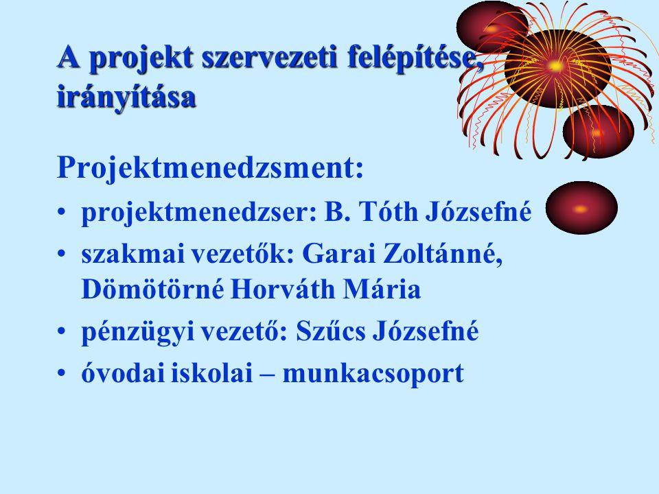 A projekt szervezeti felépítése, irányítása Projektmenedzsment: projektmenedzser: B.