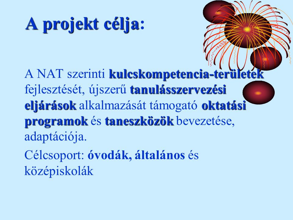 Aprojektcélja A projekt célja: kulcskompetencia-területek tanulásszervezési eljárásokoktatási programoktaneszközök A NAT szerinti kulcskompetencia-területek fejlesztését, újszerű tanulásszervezési eljárások alkalmazását támogató oktatási programok és taneszközök bevezetése, adaptációja.