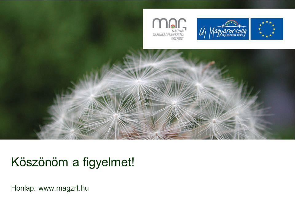 Köszönöm a figyelmet! Honlap: www.magzrt.hu