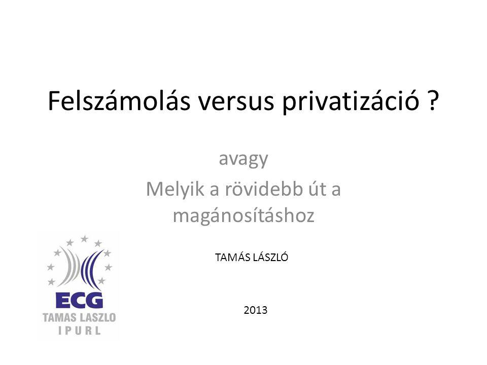 Felszámolás versus privatizáció ? avagy Melyik a rövidebb út a magánosításhoz TAMÁS LÁSZLÓ 2013