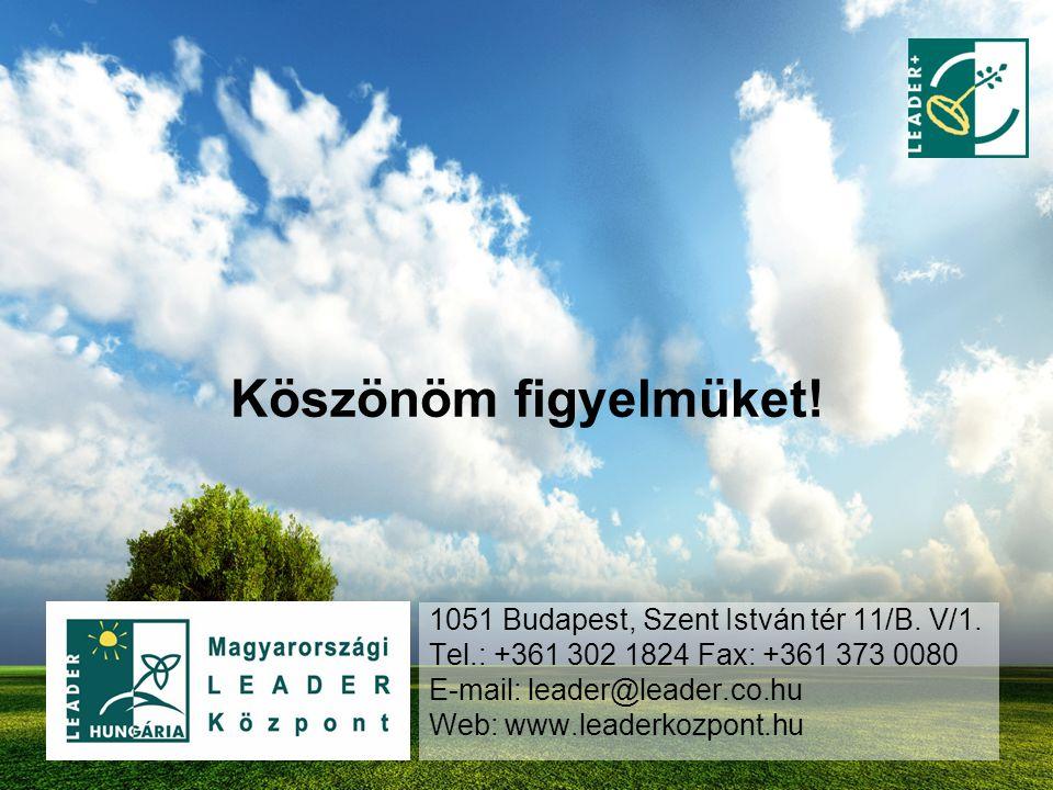 Köszönöm figyelmüket! 1051 Budapest, Szent István tér 11/B. V/1. Tel.: +361 302 1824 Fax: +361 373 0080 E-mail: leader@leader.co.hu Web: www.leaderkoz