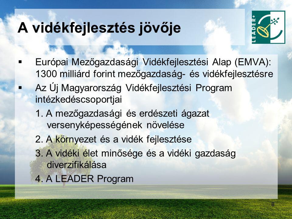 9  221 milliárd forint vidékfejlesztési elképzelések megvalósítására  Támogatható tevékenységek: -A gazdaság diverzifikációja, mikrovállalkozások támogatása, turisztikai beruházások, életminőség javítását célzó projektek, falumegújítás, a vidéki örökség megőrzése, NATURA 2000 tervek elkészítése (150 milliárd forint) - LEADER (71 milliárd forint) A vidékfejlesztés jövője