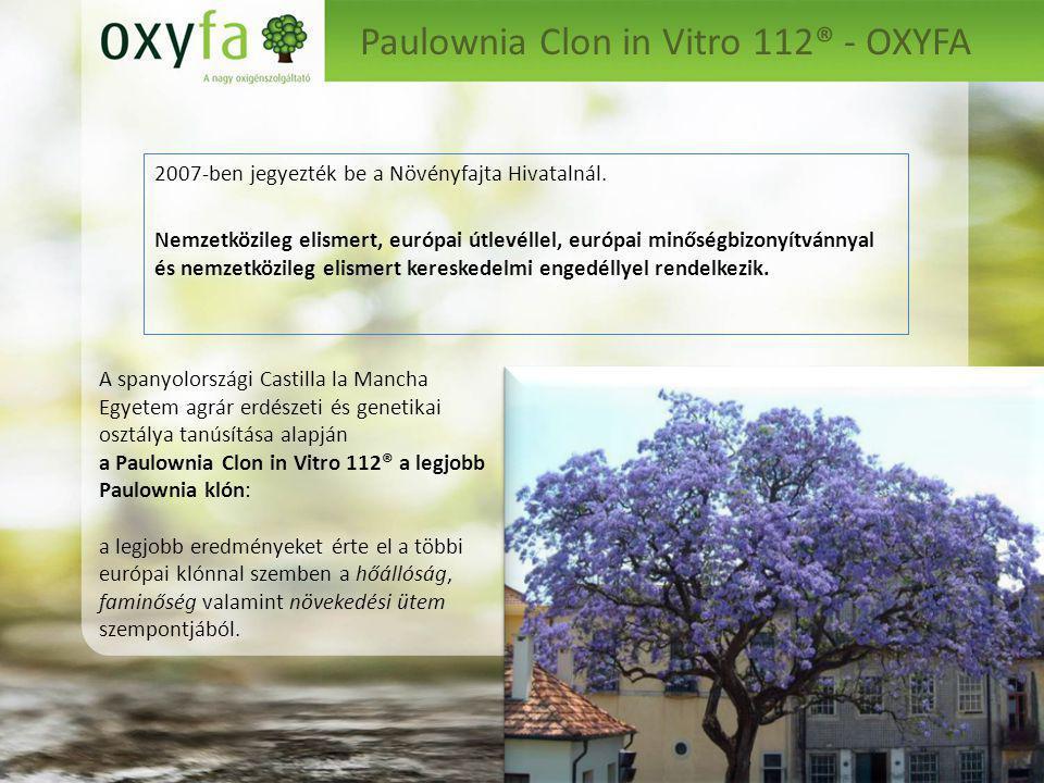 Paulownia Clon in Vitro 112® - OXYFA 2007-ben jegyezték be a Növényfajta Hivatalnál.