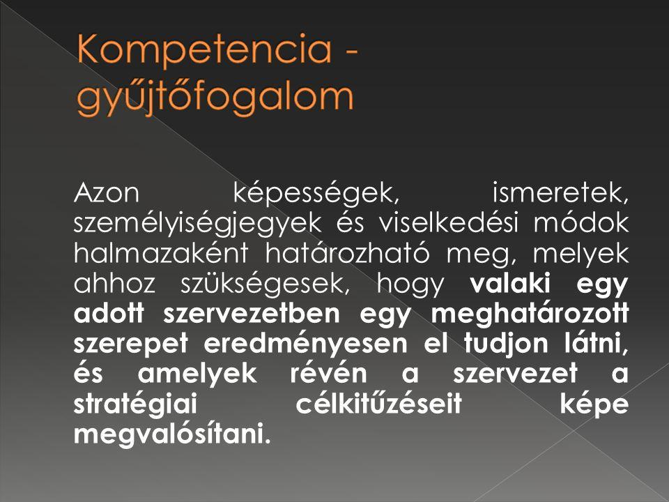  Kompetencia – szótár/regiszter/térkép kidolgozása: az összes kompetencia megnevezése, rövid tartalmi kifejtése, szintek meghatározása, leírása