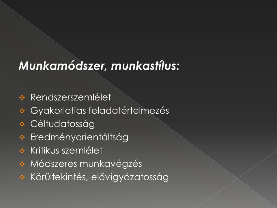 Munkamódszer, munkastílus:  Rendszerszemlélet  Gyakorlatias feladatértelmezés  Céltudatosság  Eredményorientáltság  Kritikus szemlélet  Módszeres munkavégzés  Körültekintés, elővigyázatosság