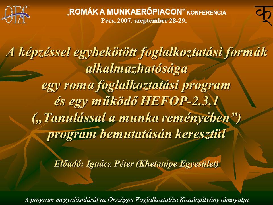 """A képzéssel egybekötött foglalkoztatási formák alkalmazhatósága egy roma foglalkoztatási program és egy működő HEFOP-2.3.1 (""""Tanulással a munka reményében ) program bemutatásán keresztül Előadó: Ignácz Péter (Khetanipe Egyesület) """"ROMÁK A MUNKAERŐPIACON KONFERENCIA Pécs, 2007."""
