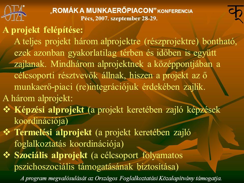 """A program megvalósulását az Országos Foglalkoztatási Közalapítvány támogatja. """"ROMÁK A MUNKAERŐPIACON"""" KONFERENCIA Pécs, 2007. szeptember 28-29. A pro"""
