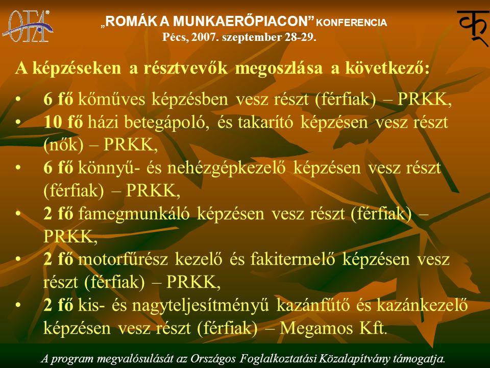 """A program megvalósulását az Országos Foglalkoztatási Közalapítvány támogatja. """"ROMÁK A MUNKAERŐPIACON"""" KONFERENCIA Pécs, 2007. szeptember 28-29. A kép"""