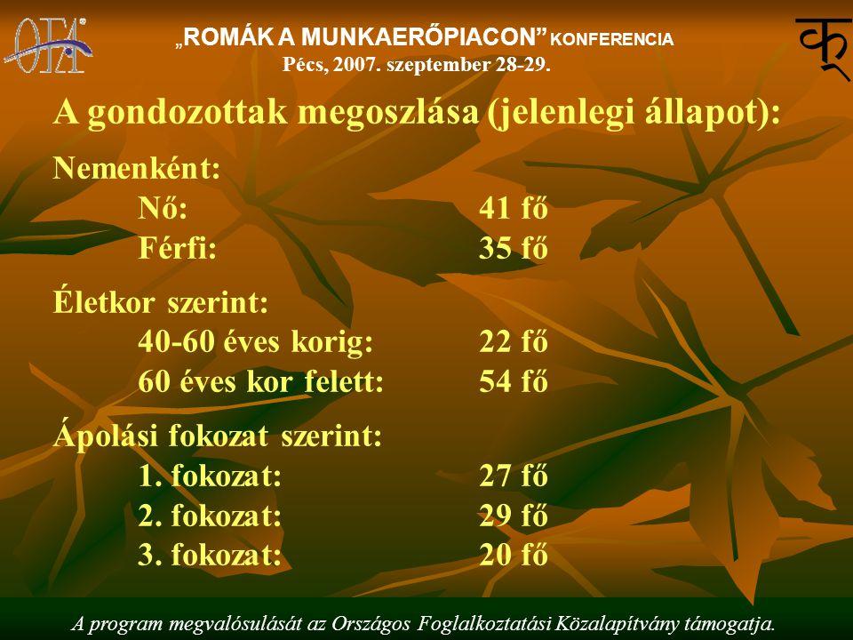 """A program megvalósulását az Országos Foglalkoztatási Közalapítvány támogatja. """"ROMÁK A MUNKAERŐPIACON"""" KONFERENCIA Pécs, 2007. szeptember 28-29. A gon"""