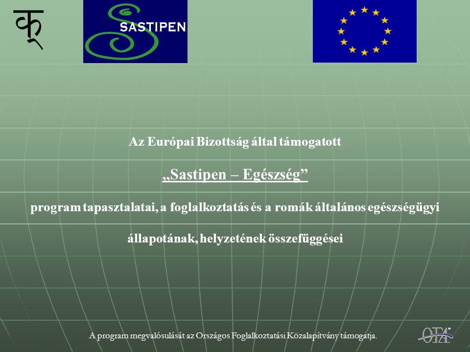 """A program megvalósulását az Országos Foglalkoztatási Közalapítvány támogatja. Az Európai Bizottság által támogatott """"Sastipen – Egészség"""" program tapa"""