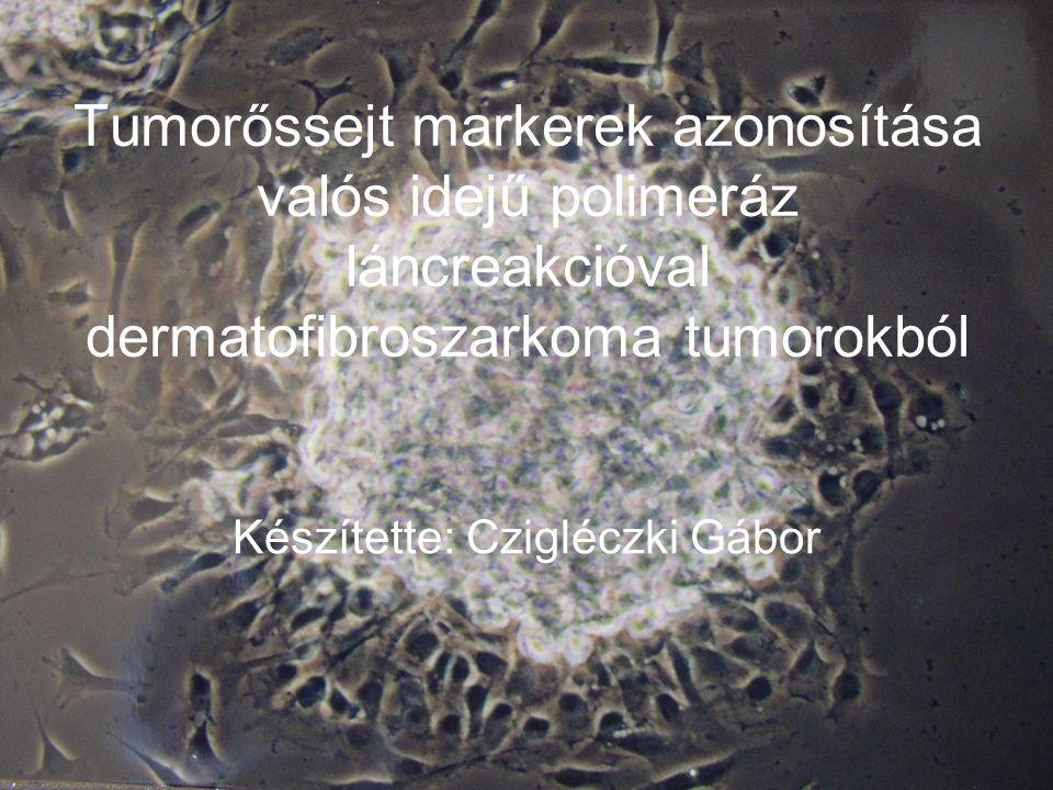 Tumorőssejt markerek azonosítása valós idejű polimeráz láncreakcióval dermatofibroszarkoma tumorokból Készítette: Czigléczki Gábor