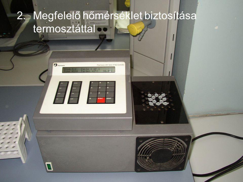 2.Megfelelő hőmérséklet biztosítása termosztáttal