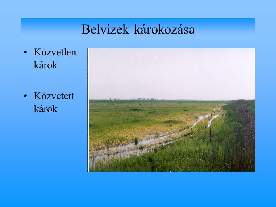 1.Természeti tényezők a.időjárási elemek b. talajtani tényezők c.