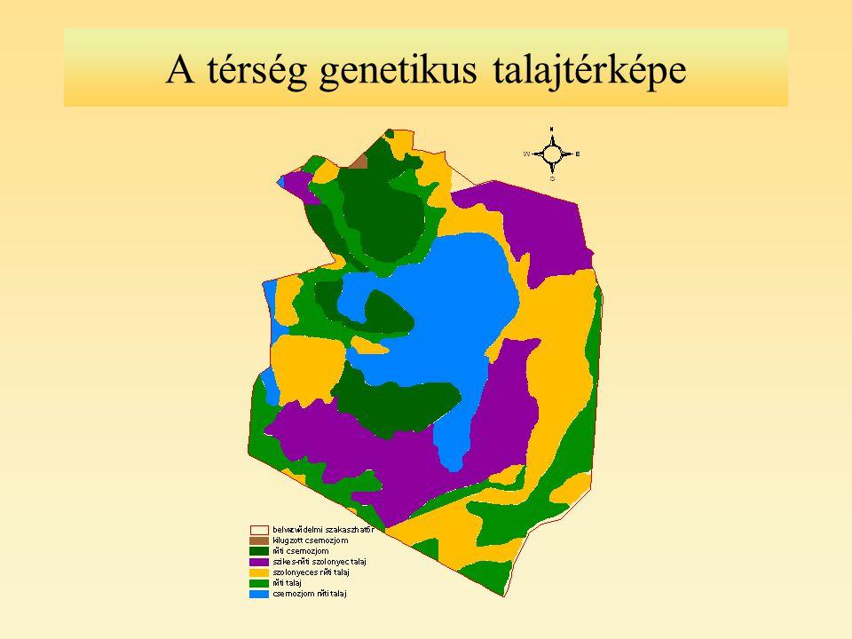 A térség genetikus talajtérképe