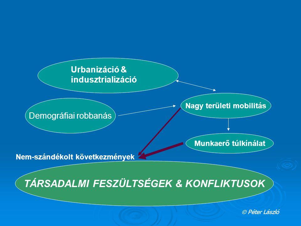 """AUGUSTE COMTE Pozitív következmények """"funkcionális demokratizálódás 1."""