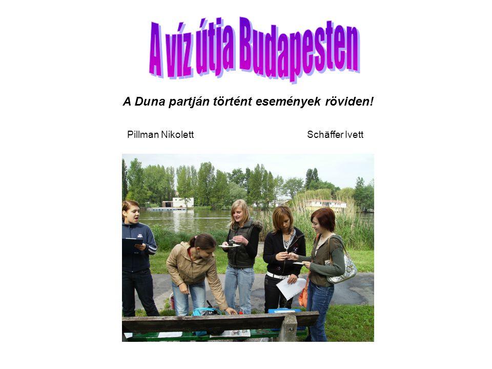 A Duna partján történt események röviden! Pillman Nikolett Schäffer Ivett