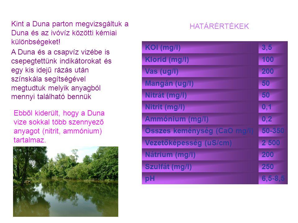 Kint a Duna parton megvizsgáltuk a Duna és az ivóvíz közötti kémiai különbségeket! KOl (mg/l)3,5 Klorid (mg/l)100 Vas (ug/l)200 Mangán (ug/l)50 Nitrát