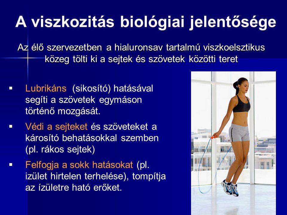  Lubrikáns (sikosító) hatásával segíti a szövetek egymáson történő mozgását.  Védi a sejteket és szöveteket a károsító behatásokkal szemben (pl. rák