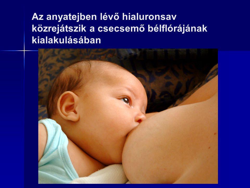 Az anyatejben lévő hialuronsav közrejátszik a csecsemő bélflórájának kialakulásában