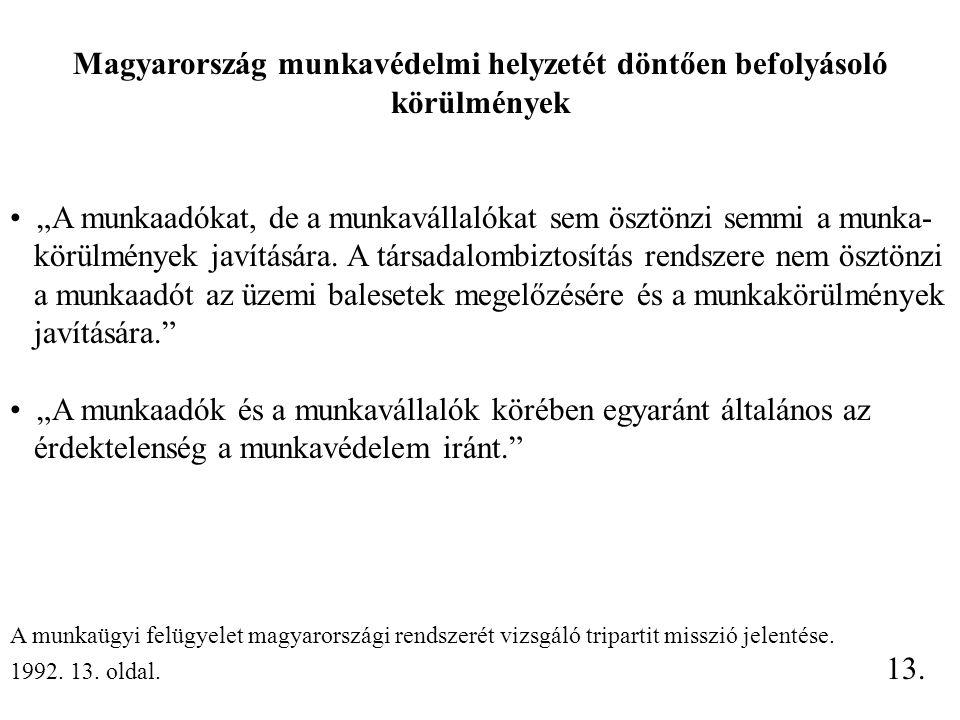 """Magyarország munkavédelmi helyzetét döntően befolyásoló körülmények """"A munkaadókat, de a munkavállalókat sem ösztönzi semmi a munka- körülmények javítására."""