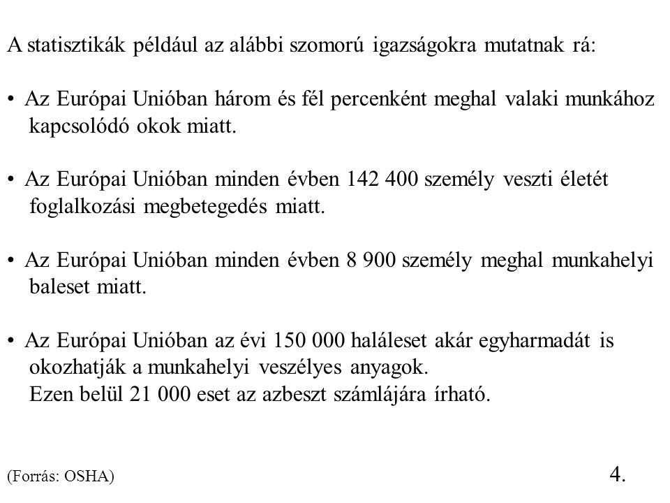 A munkabalesetek alakulása és gyakorisága: 2006.2007.