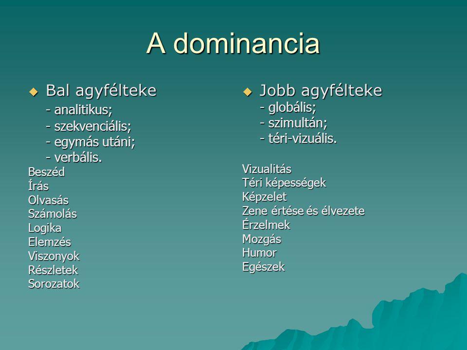 A dominancia  Bal agyfélteke - analitikus; - szekvenciális; - egymás utáni; - verbális. BeszédÍrásOlvasásSzámolásLogikaElemzésViszonyokRészletekSoroz