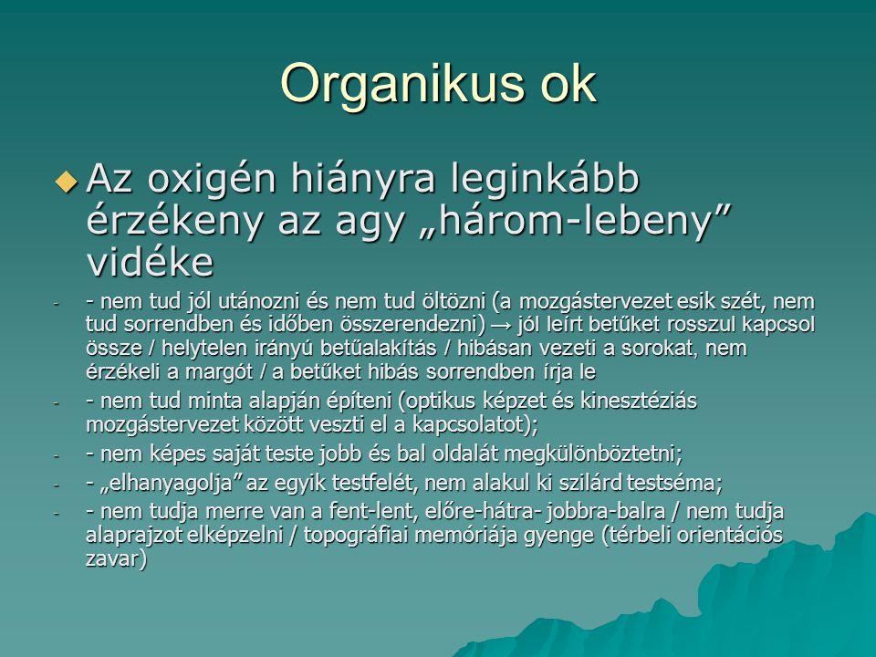 """Organikus ok  Az oxigén hiányra leginkább érzékeny az agy """"három-lebeny"""" vidéke - - nem tud jól utánozni és nem tud öltözni (a mozgástervezet esik sz"""