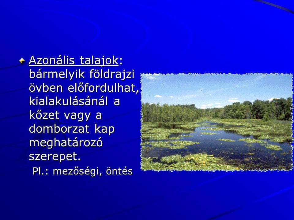 Azonális talajok: bármelyik földrajzi övben előfordulhat, kialakulásánál a kőzet vagy a domborzat kap meghatározó szerepet. Pl.: mezőségi, öntés