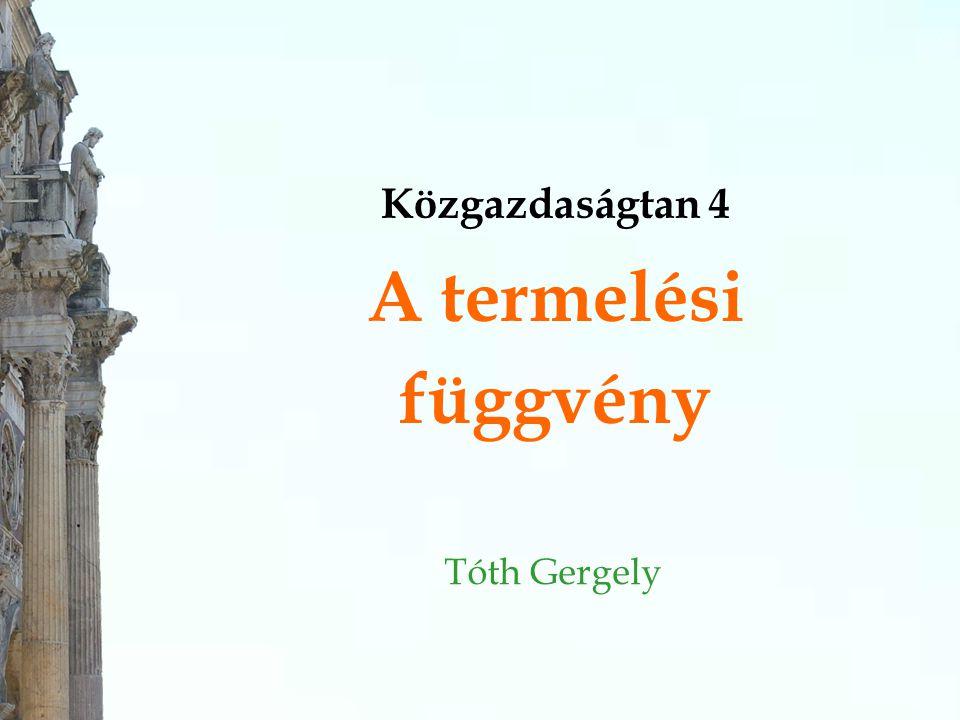 Közgazdaságtan 4 A termelési függvény Tóth Gergely