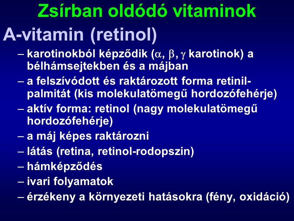 Zsírban oldódó vitaminok A-vitamin (retinol) –karotinokból képződik ( , ,  karotinok) a bélhámsejtekben és a májban –a felszívódott és raktározott