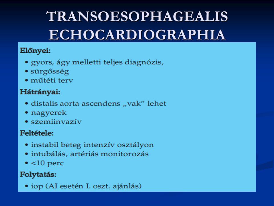 TRANSOESOPHAGEALIS ECHOCARDIOGRAPHIA