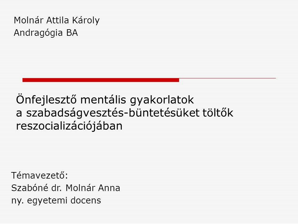Önfejlesztő mentális gyakorlatok a szabadságvesztés-büntetésüket töltők reszocializációjában Molnár Attila Károly Andragógia BA Témavezető: Szabóné dr.