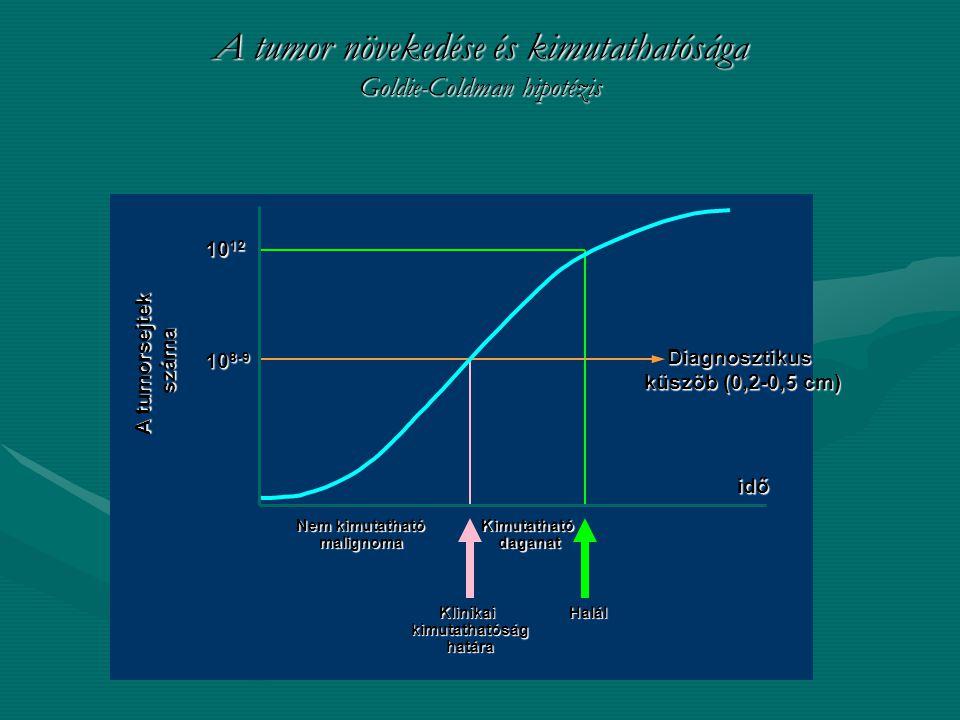 """A tumorok heterogenitása Elsődleges daganatMetasztázis TranszformációTumor """"evolúció Metasztázis Tumor """"evolúció és progresszió és progresszió"""