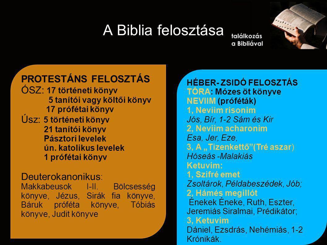A Biblia felosztása PROTESTÁNS FELOSZTÁS ÓSZ: 17 történeti könyv 5 tanítói vagy költői könyv 17 prófétai könyv Úsz: 5 történeti könyv 21 tanítói könyv Pásztori levelek ún.