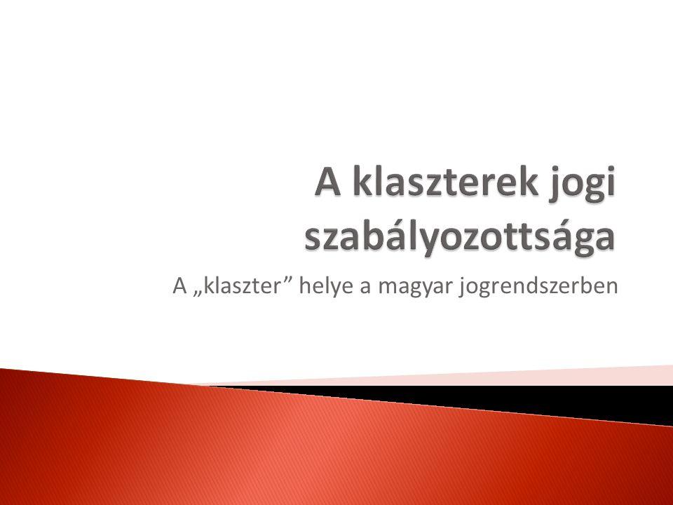 """A """"klaszter"""" helye a magyar jogrendszerben"""